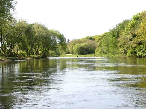 Fishing at Darragh Cottages